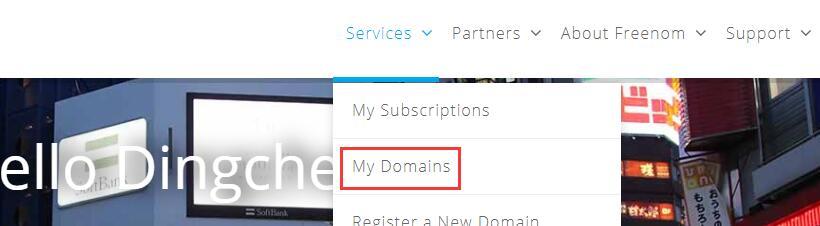 国外免费注册域名网站 17
