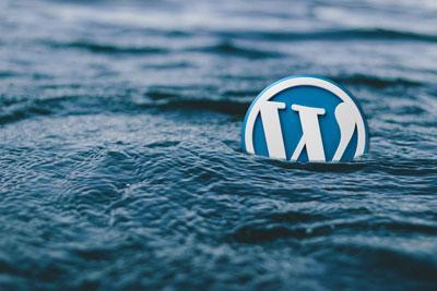 WordPress评论不了,回复按钮失效